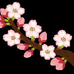 """【国会LIVE】 #安倍「桜を見る会の参加者は """"募っている""""という認識。""""募集している""""認識ではなかった」"""